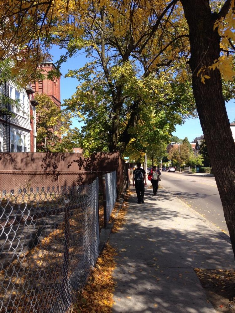 The magic of fall in Boston