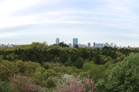 Boston from the Arnold Arboretum